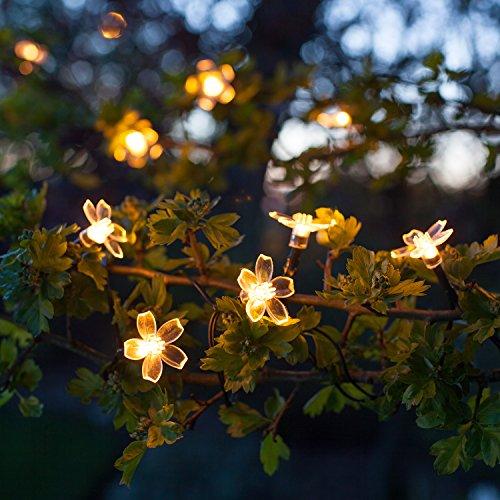 Ofertas guirnalda solar de flores de 30 leds de luz blanca for Luz blanca o calida
