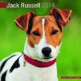 Avonside Publishing Jack Russell 2014 (Calendar 2014)