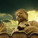 Buddha's Teachings | Bukkyo Dendo Kyokai