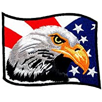 American Flag Bald Eagle Embroidered Patch Patriotic Iron-On Bird Emblem