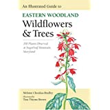 An Illustrated Guide to Eastern Woodland Wildflowers and Trees: 350 Plants Observed at Sugarloaf Mountain, Maryland...