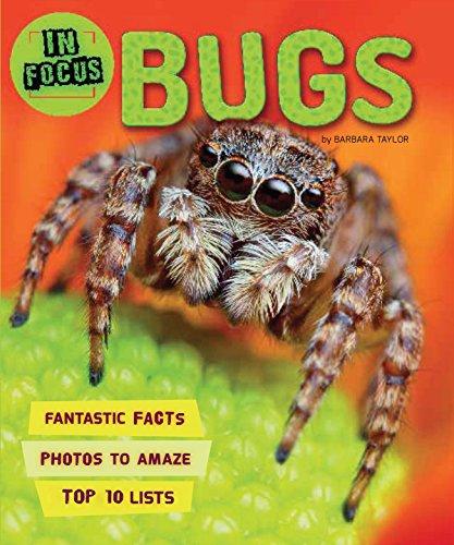 in-focus-bugs