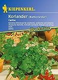 Kräutersamen - Koriander Caribe von Kiepenkerl