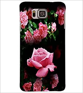 PrintDhaba Roses D-4163 Back Case Cover for SAMSUNG GALAXY ALPHA (Multi-Coloured)