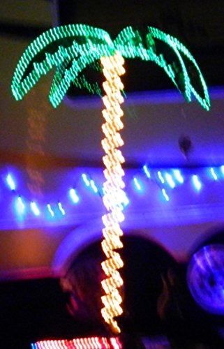 outdoor lighted palm tree 7 holographic rope light