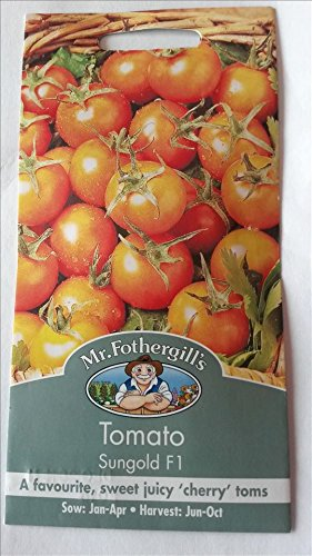 mr-fothergills-seeds-tomato-sungold-f1-sweet-juicy-cherry-toms