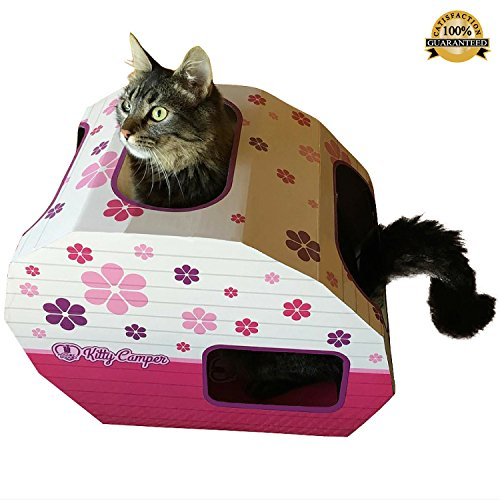 -uk-launch-vente-en-carton-maison-pour-chat-le-chat-interieur-kitty-chateau-de-camper-est-la-maison-