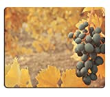 MSD Natural Rubber Gaming Mousepad Sweet and tasty blue grape bunch on the vine IMAGE 29661514