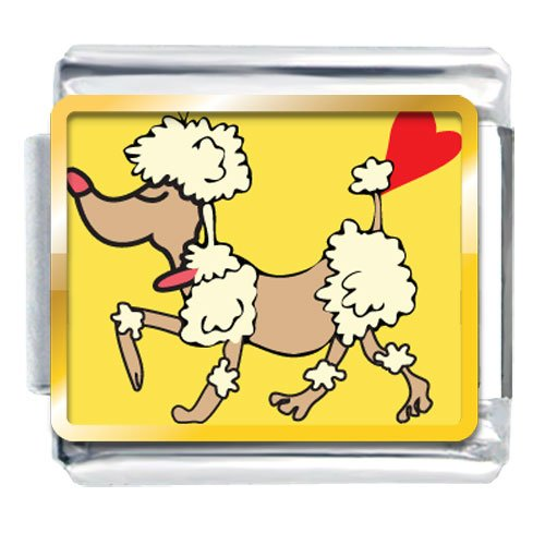 Animal Photo Toy Poodle Dog Italian Charms Bracelet Link