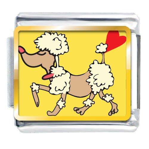 Animal Photo Toy Poodle Dog Italian Charms Bracelet Link