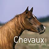 Calendrier mural Chevaux 2014
