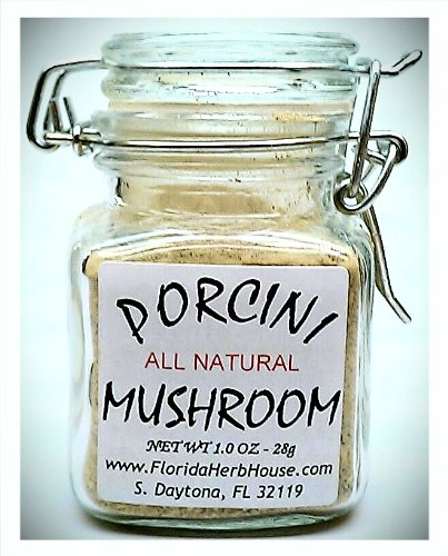 Porcini Mushroom Powder 1.0 oz. (28g) - Great
