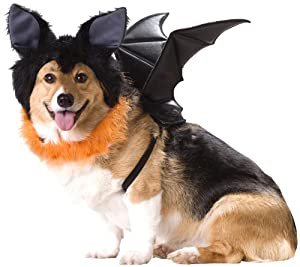 Animal Planet PET20103 Bat Dog Costume, Large