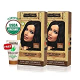 Indus Valley Organic Botanical Hair Colour Indus Black One Time Use (Set of 2)