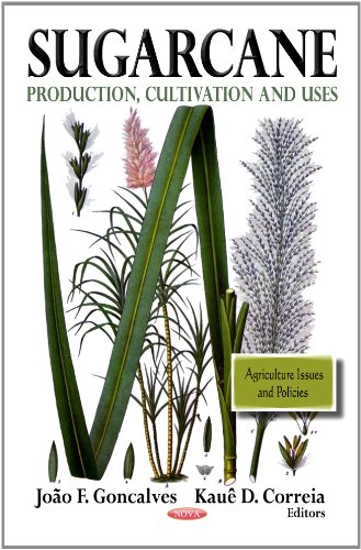 Agriculture Nutrition And Health