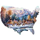 Bits and Pieces - 750 Piece Shaped Puzzle - Home of the Brave, Native American - by Artist Kirk Randle - 750 pc Jigsaw