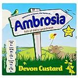 Ambrosia Devon Custard 12x500g