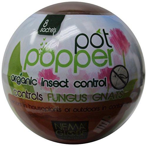 nemaglobe-pot-popper-organic-insect-control