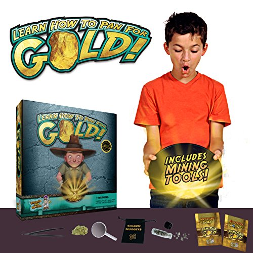 Pan for Gold Science Kit - Learn Gold Panning and Become a Prospector! (Kids Gold Panning Kit compare prices)