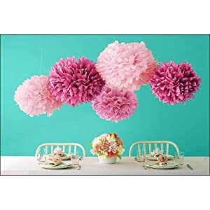 Martha Stewart Celebrate Decor 5-Pack Pom Poms - Pink 2PC