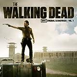 Lead Me Home (The Walking Dead Soundtrack)