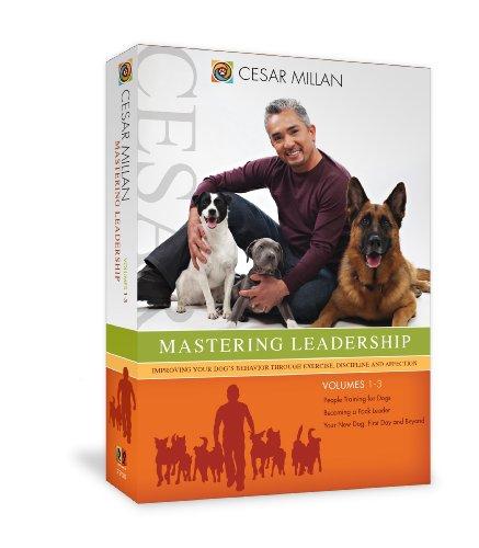 Mastering Leadership [DVD] [Region 1] [US Import] [NTSC]