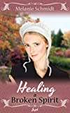 img - for Healing A Broken Spirit - Amish Romance (Love's Healing Touch Book 2) book / textbook / text book