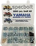 250pc Specbolt Yamaha Banshee Bolt Kit for Maintenance & Restoration OEM Spec Fasteners ATV Quad by Specbolt
