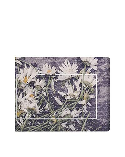 Oliver Gal 'Daisies' Canvas Art