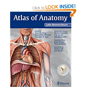 Anatomy atlas rohen 6412609 - follow4more.info