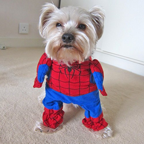 [AFK Pet Dogs Cats Costumes Red Spiderman Sweats Shirts Sweaters Coats Jumpsuits Parties (Medium)] (Business Suit Dog Costume)
