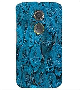 PrintDhaba Roses D-3436 Back Case Cover for MOTOROLA MOTO X2 (Multi-Coloured)