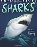 Animal Lives: Sharks