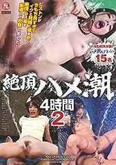 絶頂ハメ潮4時間2 乱丸 [DVD]
