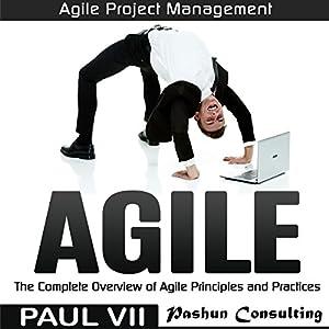 Agile Audiobook