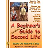 A Beginner's Guide to Second Life version 1.1 ~ V3image