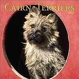 Cairn Terriers 2004 Calendar