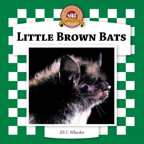 Little Brown Bats (Bats Set II)