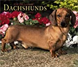 For the Love of Dachshunds 2004 Calendar