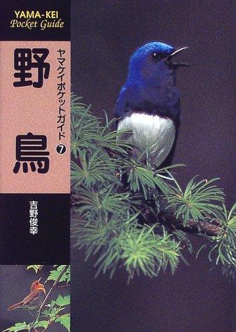 野鳥 (ヤマケイポケットガイド)
