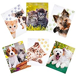 Mead Purrs & Grrrs 2-Pocket Folder, Assorted Designs, 6 Pack (73067) by Mead