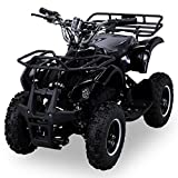 NEU Elektro Kinder Miniquad TORINO 800 Watt ATV Pocket Quad...