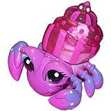 Xia-Xia Hermit Crab - Bimini
