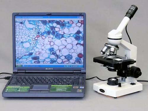 Amscope M220-P Digital Monocular Compound Microscope, Wf10X Eyepiece, 40X-400X Magnification, Tungsten Illumination, Brightfield, 1.25 Na Abbe Condenser, Coaxial Coarse And Fine Focus, Mechanical Stage, 110V, Includes 0.3Mp Camera With Reduction Lens And