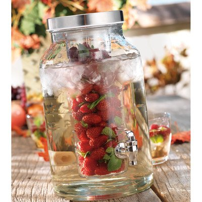 water infuser glass