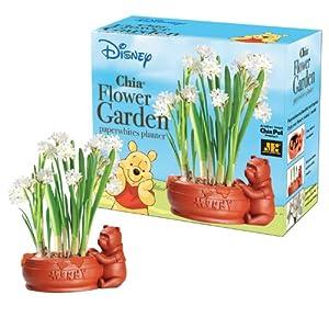 Chia Winnie The Pooh Flower Garden Planter