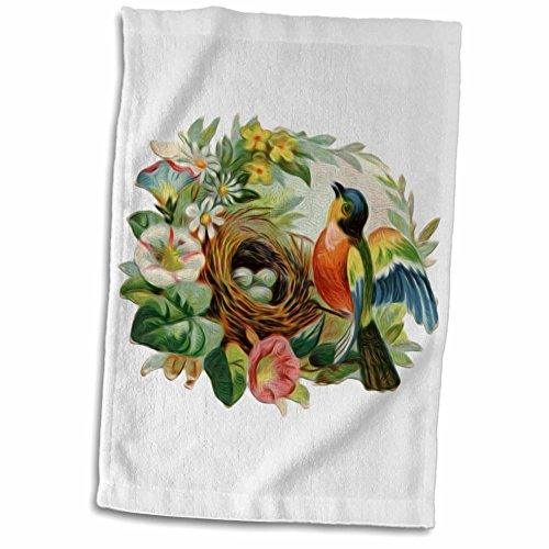 3dRose Dooni Designs Vintage Designs - Vintage Colorful Bird Robins Nest And Lovely Floral Wreath Border - 12x18 Towel (twl_104623_1)