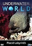 Underwater World - Placid Labyrinth [DVD]