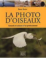 La photo d'oiseaux - Conseils et astuces d'un professionnel