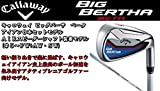 Callaway(キャロウェイ) 2015 BIG BERTHA BETA アイアン AIR SPEEDER FOR BIG BERTHA カーボンシャフト 8本セット(#5-9,PW+AW・SW) (FLEX-SR)